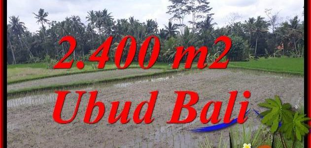 Beautiful Property 2,400 m2 Land in Ubud Pejeng Bali for sale TJUB697