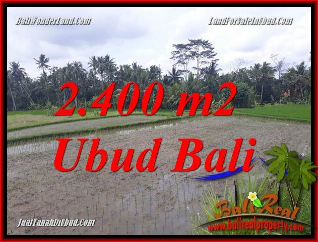 Magnificent Property 2,400 m2 Land in Ubud Pejeng Bali for sale TJUB697