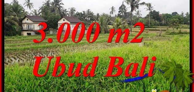 FOR sale Affordable 3,000 m2 Land in Ubud Bali TJUB698