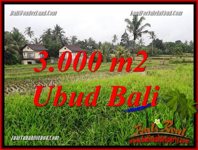 Affordable 3,000 m2 Land for sale in Ubud Tegalalang TJUB698