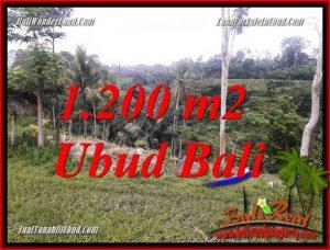 Affordable Land in Ubud for sale TJUB699