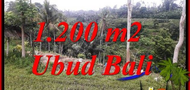 Affordable Land in Ubud for sale TJUB699