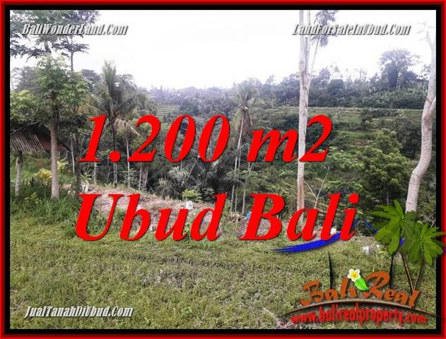 Affordable Ubud Land for sale TJUB699