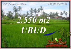 Beautiful Land for sale in Ubud TJUB700