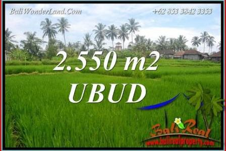 Beautiful Land for sale in Ubud TJUB700