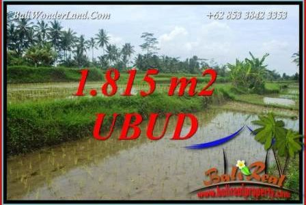 Land sale in Ubud Pejeng Bali TJUB703