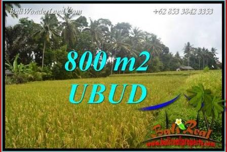Magnificent 800 m2 Land for sale in Sentral Ubud TJUB707