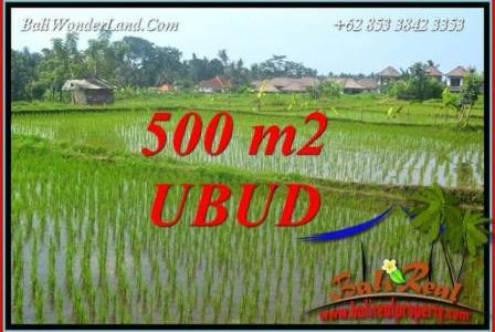 Exotic Property Land sale in Ubud TJUB708