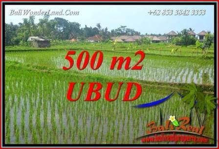 Affordable Property Ubud Land for sale TJUB708