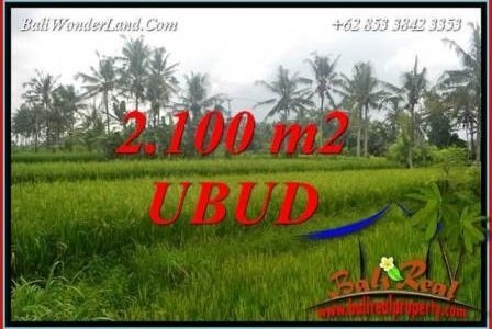 Exotic Property Ubud Pejeng 2,100 m2 Land for sale TJUB710