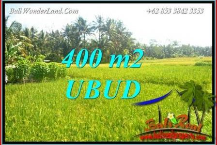 Magnificent Land in Ubud for sale TJUB711