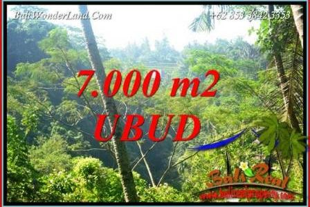 Beautiful Ubud Land for sale TJUB714