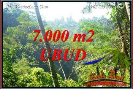 Beautiful Ubud Land for sale TJUB714
