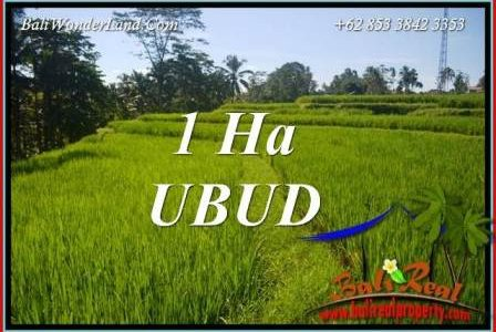 Magnificent Property Ubud Bali Land for sale TJUB715