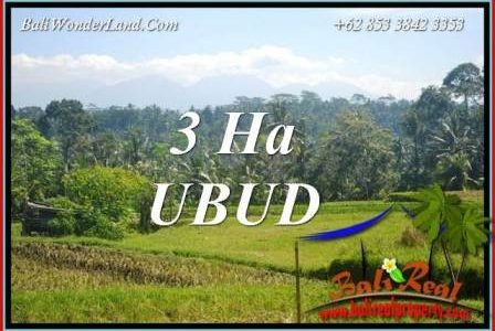 Beautiful Property Ubud Bali Land for sale TJUB718