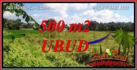 FOR sale Affordable 500 m2 Land in Ubud Bali TJUB724