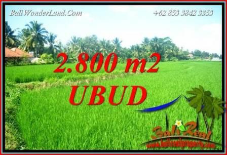 FOR sale Affordable Property 2,800 m2 Land in Sentral Ubud TJUB726