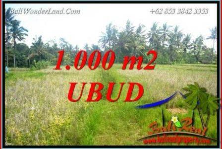 FOR sale Affordable Property 1,000 m2 Land in Ubud Bali TJUB727