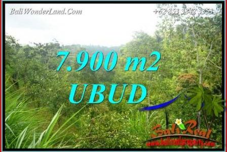 Beautiful Property Ubud Tegalalang Bali 7,900 m2 Land for sale TJUB729