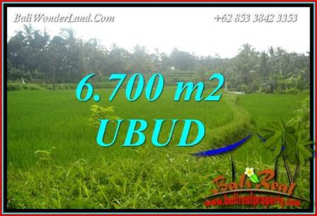 Beautiful 6,700 m2 Land in Ubud Tegalalang for sale TJUB731