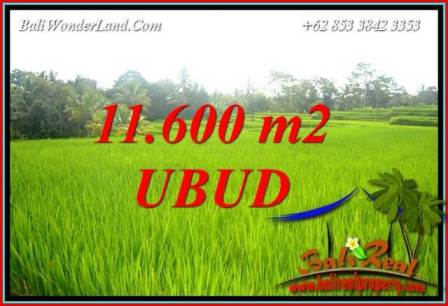 Magnificent Property 11,600 m2 Land sale in Ubud Tegalalang TJUB732