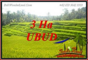 Exotic Land sale in Ubud TJUB733