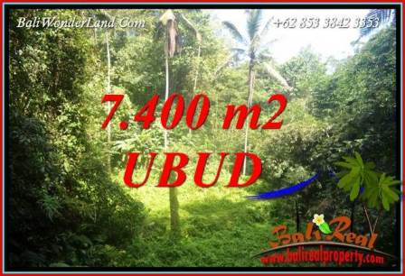 FOR sale Exotic 7,700 m2 Land in Ubud Bali TJUB734
