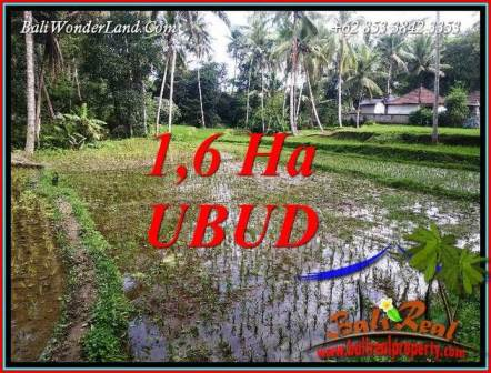 FOR sale Magnificent Property Land in Ubud TJUB735