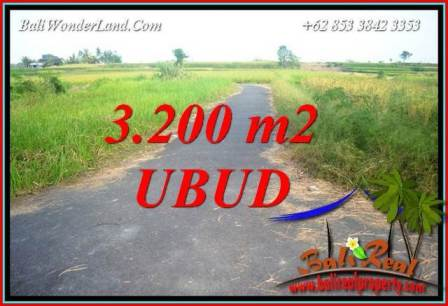 FOR sale Magnificent 3,200 m2 Land in Ubud Bali TJUB736