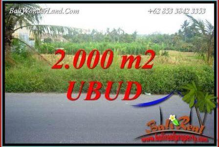 FOR sale Affordable Property 2,000 m2 Land in Ubud Bali TJUB737