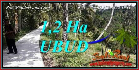 Exotic Property Land for sale in Ubud Bali TJUB740