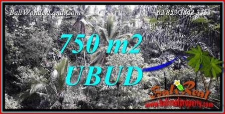 Magnificent 750 m2 Land in Ubud Tampak Siring for sale TJUB742
