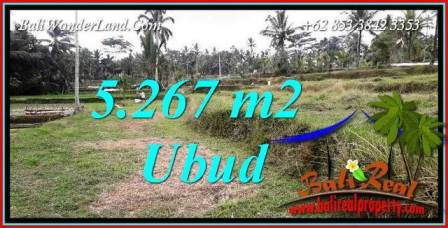 Beautiful Ubud Land for sale TJUB743