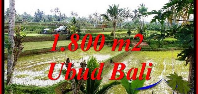 TEGALALANG UBUD BALI LAND FOR SALE TJUB769