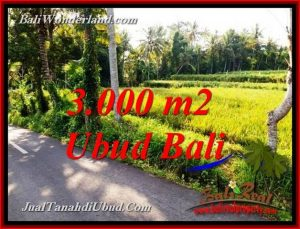 Beautiful 3,000 m2 LAND FOR SALE IN PEJENG UBUD TJUB771