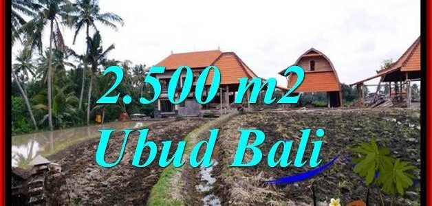 FOR SALE Magnificent PROPERTY 2,500 m2 LAND IN PEJENG UBUD TJUB772