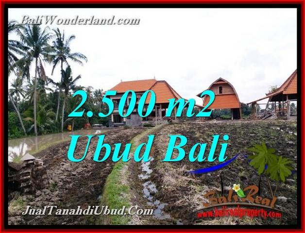 Exotic PROPERTY 2,500 m2 LAND SALE IN PEJENG UBUD TJUB772