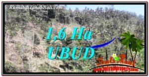 Affordable PROPERTY 16,000 m2 LAND IN Ubud Tegalalang FOR SALE TJUB748