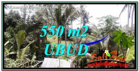 Magnificent Ubud Pejeng 550 m2 LAND FOR SALE TJUB751
