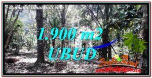 Beautiful PROPERTY LAND FOR SALE IN UBUD BALI TJUB755