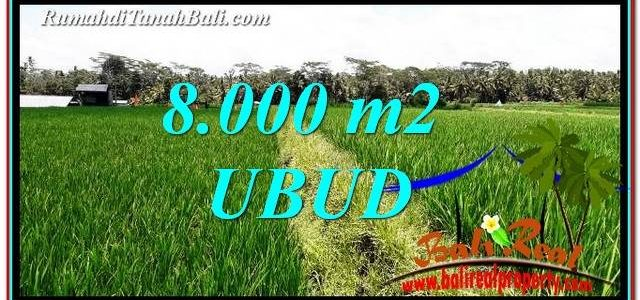 FOR SALE Magnificent PROPERTY LAND IN UBUD TJUB763