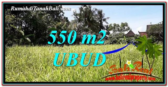 Beautiful LAND SALE IN UBUD TJUB766