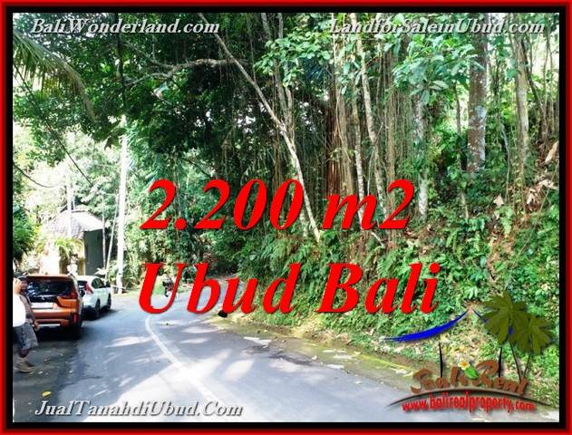 Beautiful 2,200 m2 LAND SALE IN SENTRAL UBUD TJUB768