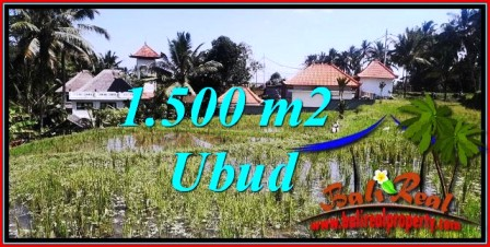 LAND FOR SALE IN UBUD TJUB744