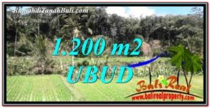 Exotic Ubud Tegalalang 1,200 m2 LAND FOR SALE TJUB746