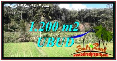Exotic Ubud Tegalalang 1,200 m2 LAND FOR SALE TJUB746