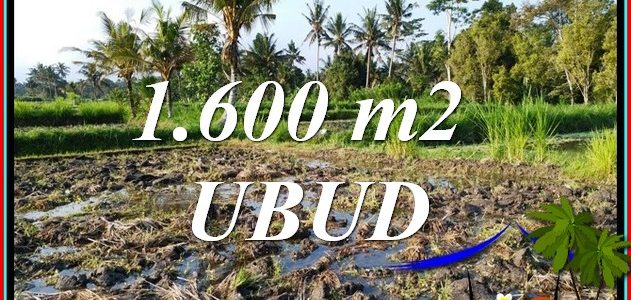 Magnificent UBUD BALI LAND for SALE TJUB807