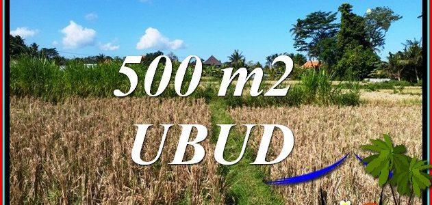 Exotic UBUD BALI LAND for SALE TJUB810