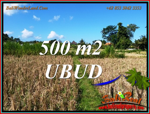 Affordable LAND in UBUD BALI for SALE TJUB810