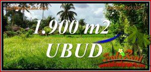 FOR SALE Magnificent LAND in UBUD BALI TJUB811
